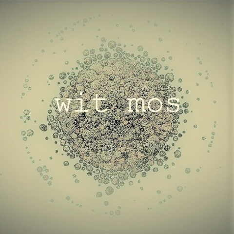 wit mos
